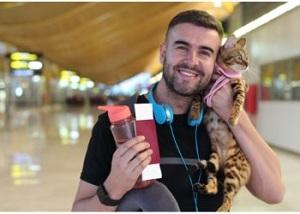 cat at airport
